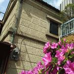 画像: 建物外観                             - 【ゼロ・ゼロ・キャンペーン】 ペットと暮らせる   DIYオーケー! 集まって楽しむ家