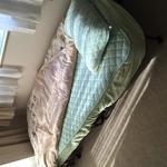 Photo: Single Room                             - 川崎駅 徒歩6分 通勤便利 ルームメイト募集