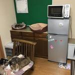 画像: リビング                             - 猫シェアハウスの女性入居者募集  千葉市中央区