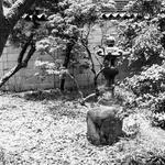 画像: 個室                             - お庭付きシェアハウス【個室2つあり】