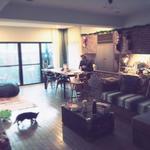 画像: リビング                             - 英語がメインのデザイナーハウスでおしゃれに暮らしたい方。 Looking for a designer house?