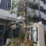 Photo: 玄関                             - Good access to 3 Shinjuku.monthly dormitory.