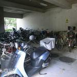 画像: 建物共用施設                             - アクセス至便 猫3匹いる3LDKです。自転車無料でお貸出し致します。