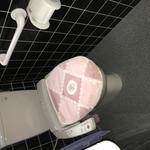 画像: トイレ                             - 【西舞鶴駅徒歩15分】個室シェアハウス・家賃14000円〜