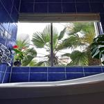 画像: 風呂                             - パームツリーを見上げるバスタイム、毎日気分は西海岸