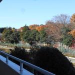 画像: 眺望                             - 駅近徒歩5分、西武池袋線「東久留米駅」、6.5畳の洋間個室、クローゼット収納あり、光熱費込み38,000円。