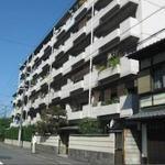画像: 建物外観                             - 【元田中駅徒歩5分】高野川の見えるのどかな場所でルームシェア【個室6畳】