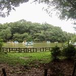 画像: その他                             - 吉祥寺/井の頭公園駅 6,5畳個室です