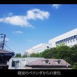 画像: ベランダ                             - 池上駅(下北沢駅)周辺の2階建て一軒家 - ルームメイトを一人探しています