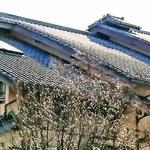 画像: 建物外観                             - 湘南鵠沼海岸江の島近くの「高級別荘シェアハウス」