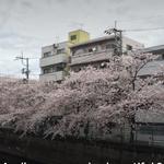 Photo: 建物外観                             - JR蒲田駅歩5分リノベ1R リモートワークに○