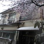 画像: 建物外観                             - wifi料金込み☆埼京線の十条駅から徒歩約4分です。新宿まで3駅で池袋までは2駅で交通の便がよく住むのに最適なところです。