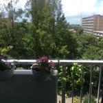 画像: ベランダ                             - ルームシェア募集 都心まで30分 A room available in the shared apartment