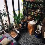 画像: 玄関                             - ネコ好きなハウスメイト募集