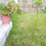 画像: その他                             - 駐車場と庭付きの新築一軒家の2部屋 菜園や庭の楽しみ