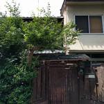 Photo: 建物外観                             - シェアメイト募集(左京区 銀閣寺近く 8月以降 ※条件あり)