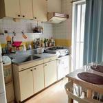 画像: キッチン                             - 大人の女性シェアメイトを募集いたします