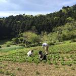 画像: その他                             - 東京の里山でルームシェア!