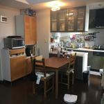 画像: キッチン                             - 小動物好きの方やゆるくオタクな方! 葛飾区駅徒歩3分。即入居可!