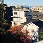 画像: リビング                             - 【女性限定】今すぐ入居可能 ! 二子玉川駅徒歩 6分