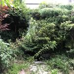 Photo: 建物共用施設                             - (1部屋2人入居可&家具付)名古屋駅近くの庭付きのシェアハウス【2021年2月より入居可能予定】残り2部屋です