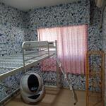 画像: 個室                             - 築浅分譲マンションでルームメイトを募集しています(ペット可)