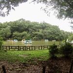 Photo: Others                             - 井の頭公園前 日当たりが良い個室4.5畳