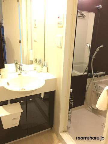 Japan sublet 洗面所