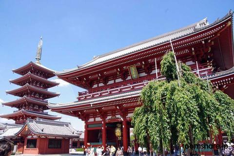 Japan sublet Others
