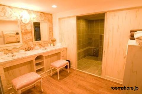 Japan accommodation 洗面所