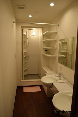 Japan accommodation 洗面所